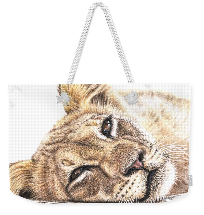 Lion Weekender Tote Bag featuring the drawing Tired Young Lion by Nicole Zeug
