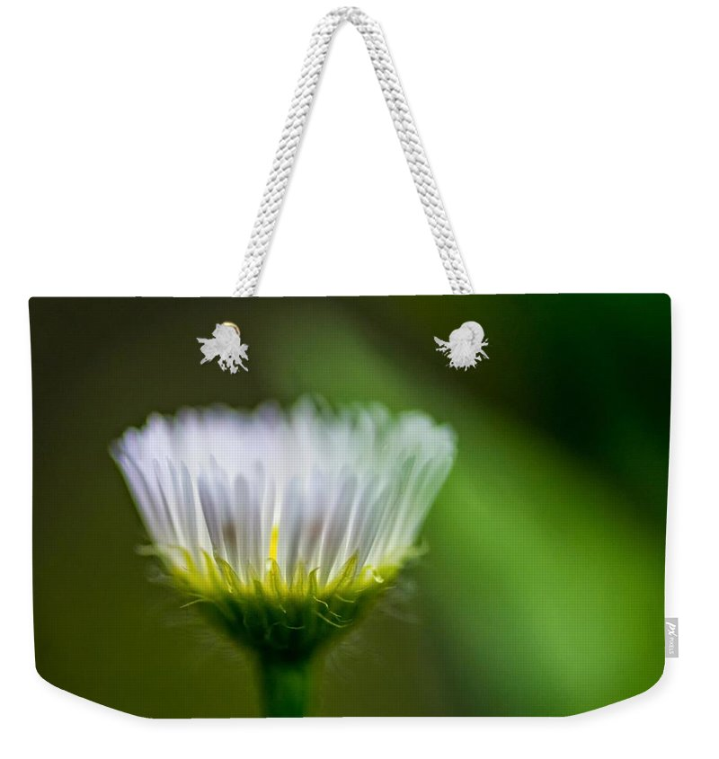 Macro Weekender Tote Bag featuring the photograph Tis But A Dream by Steve Harrington