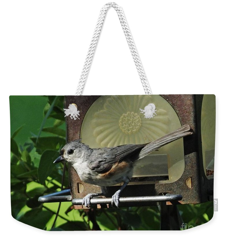 Titmouse Weekender Tote Bag featuring the photograph Titmouse 2 by Lizi Beard-Ward