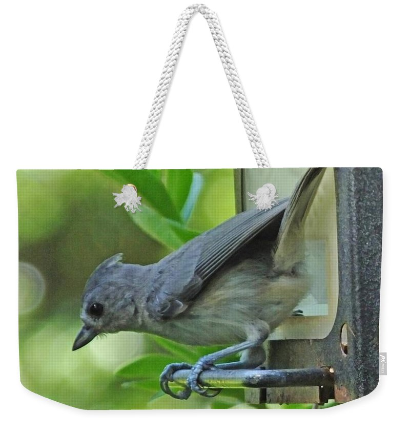 Titmouse Weekender Tote Bag featuring the photograph Titmouse by Lizi Beard-Ward