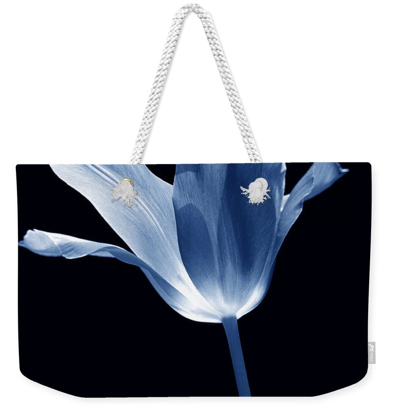 Tulip Weekender Tote Bag featuring the photograph To The Light Tulip Flower In Blue by Jennie Marie Schell