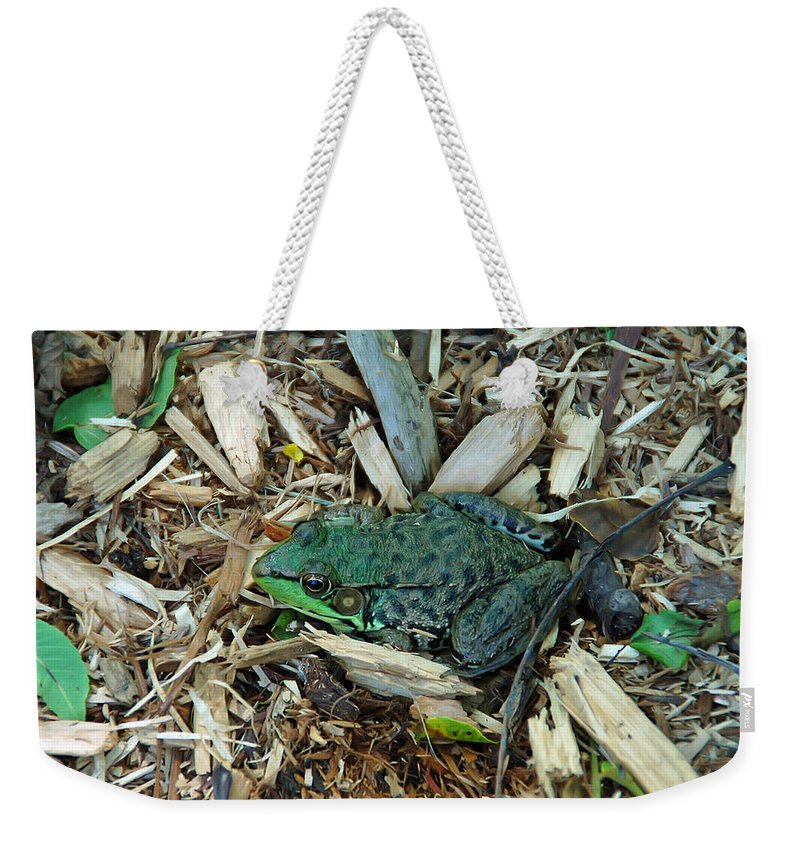 Frog Weekender Tote Bag featuring the photograph Toad Master by Aimee L Maher ALM GALLERY