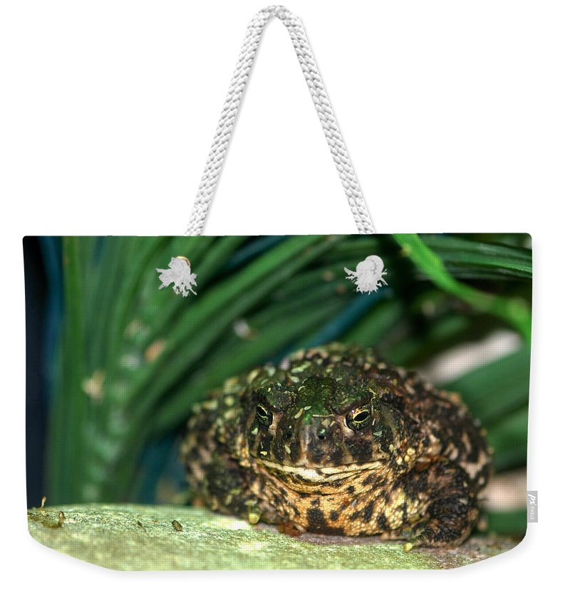 Weekender Tote Bag featuring the photograph Toad by Optical Playground By MP Ray