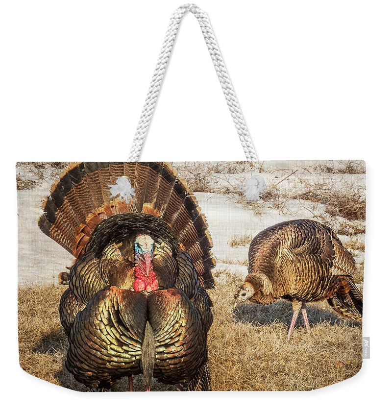 Wild Turkey Weekender Tote Bag featuring the photograph Tom Turkey And Hen by Patti Deters