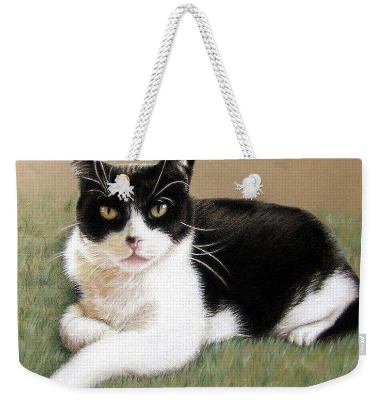 Cat Weekender Tote Bag featuring the pastel Tomcat Baloo by Nicole Zeug