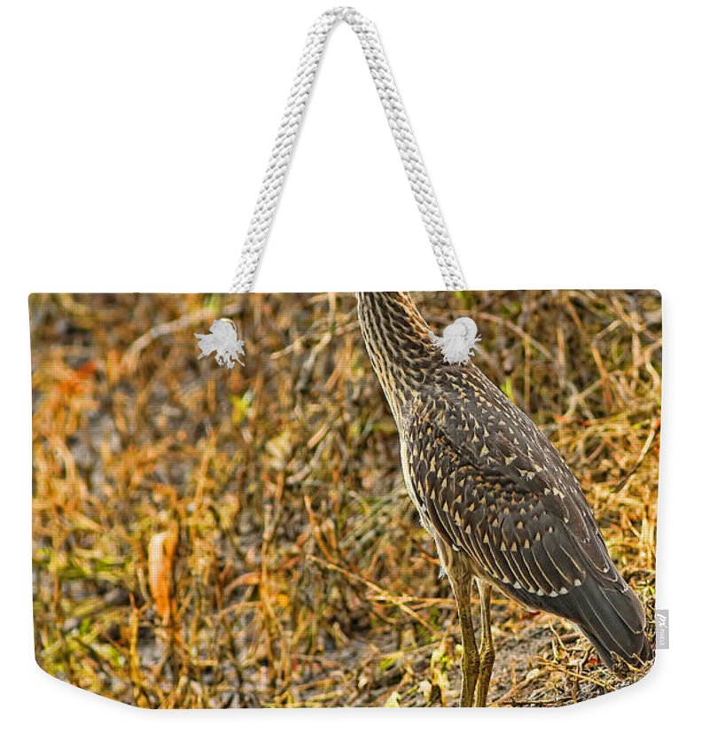 Yellow Weekender Tote Bag featuring the photograph Too Close For Comfort by Gary Holmes