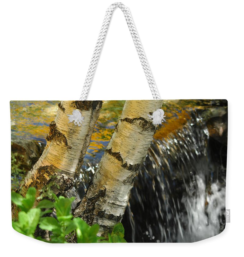 Birch Trees Weekender Tote Bag featuring the photograph Totally Birching by Donna Blackhall