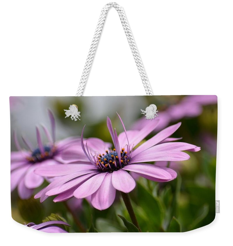 Touch Of Elegance Weekender Tote Bag featuring the photograph Touch Of Elegance by Maria Urso