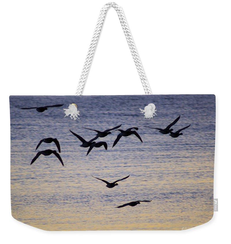 Goose Weekender Tote Bag featuring the photograph Toward Nightfall by Joe Geraci
