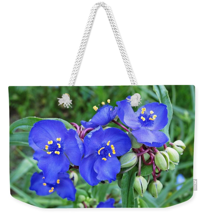 Weekender Tote Bag featuring the photograph Tradescantia Blooming by MTBobbins Photography