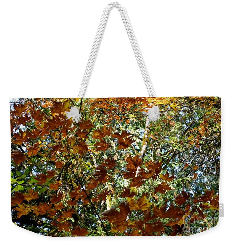 Nature Weekender Tote Bag featuring the photograph Transition 2 by Stephanie Bland