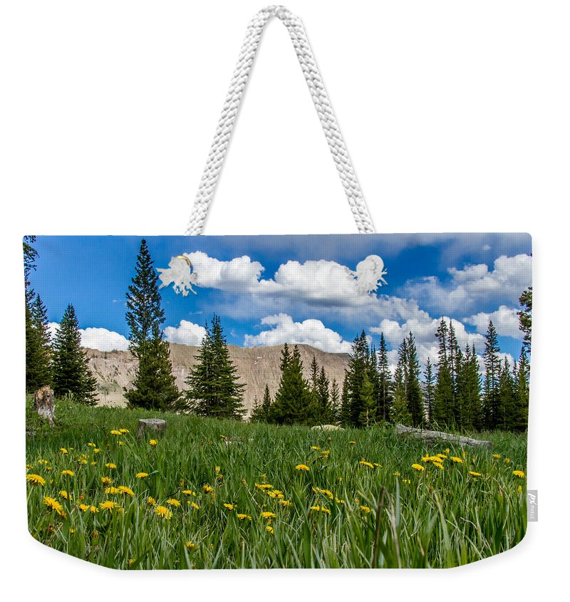 Trappers Lake Weekender Tote Bag featuring the photograph Trappers Lake Meadow by Jeff Stoddart