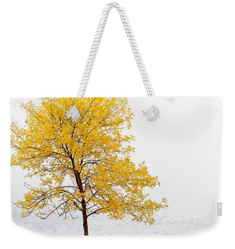 Autumn Weekender Tote Bag featuring the photograph Tree by U Schade