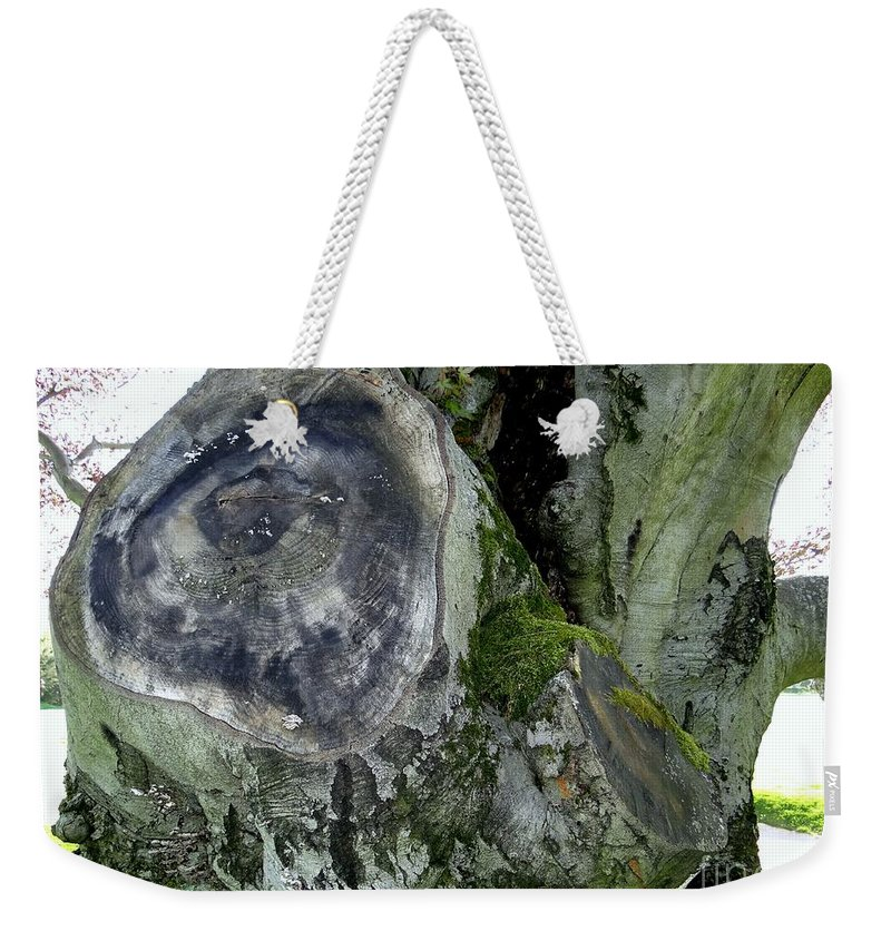 Tree Weekender Tote Bag featuring the photograph Tree Abstract by Ed Weidman