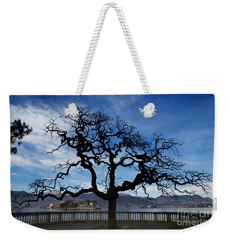 Tree Weekender Tote Bag featuring the photograph Tree And Borromee Islands by Mats Silvan