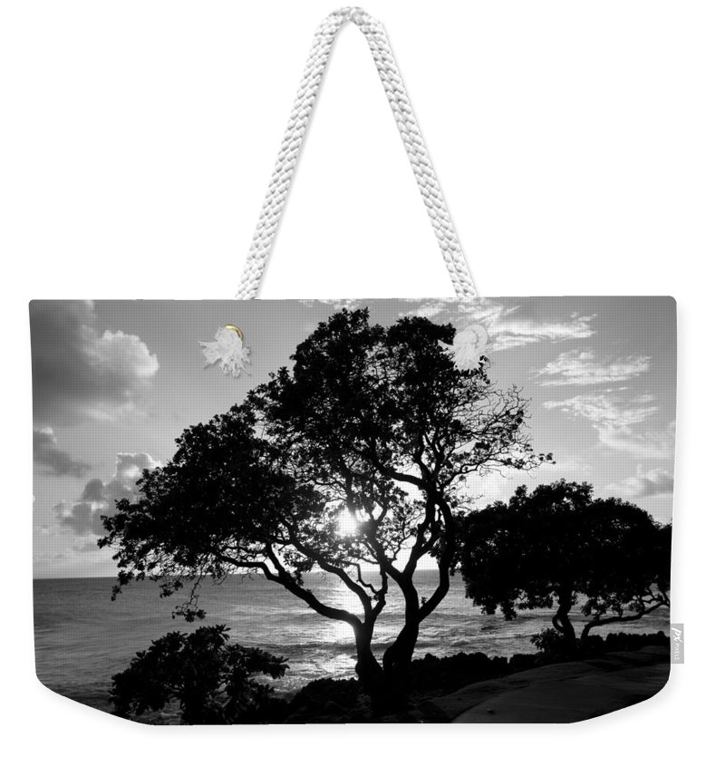 B&w Weekender Tote Bag featuring the photograph Tree And Sun by Eric Swan