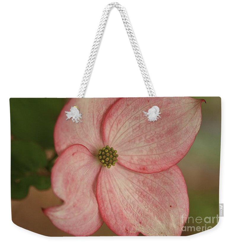 Flower Weekender Tote Bag featuring the photograph Tree Flower by Deborah Benoit
