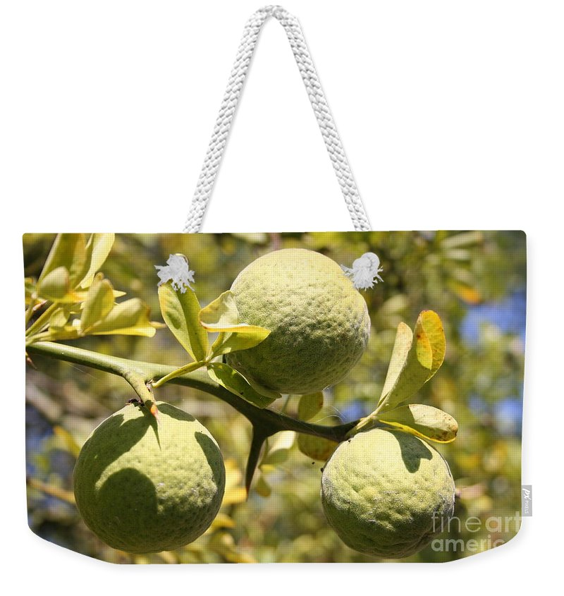 Fruit Weekender Tote Bag featuring the photograph Tree Fruit by Christiane Schulze Art And Photography