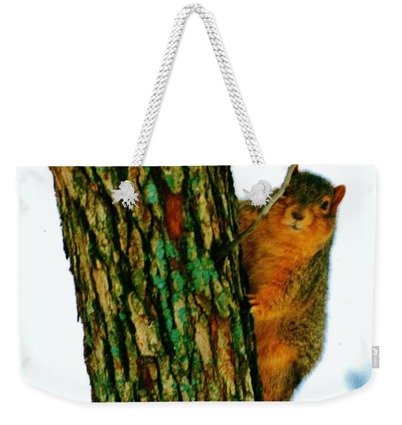 Tree Hugger Weekender Tote Bag featuring the photograph Tree Hugger by Daniel Thompson