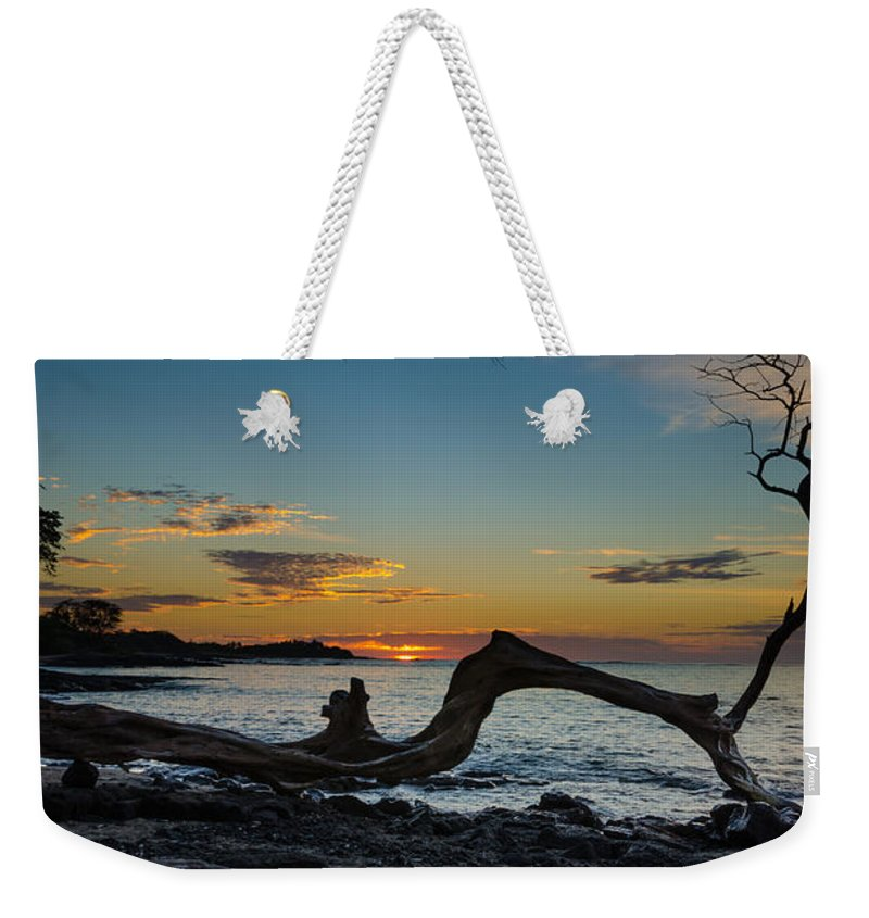 Tree Weekender Tote Bag featuring the photograph Tree by Nikolai Martusheff