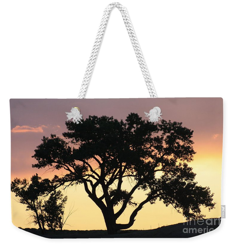 Tree Weekender Tote Bag featuring the photograph Tree Of Life by Brandi Maher