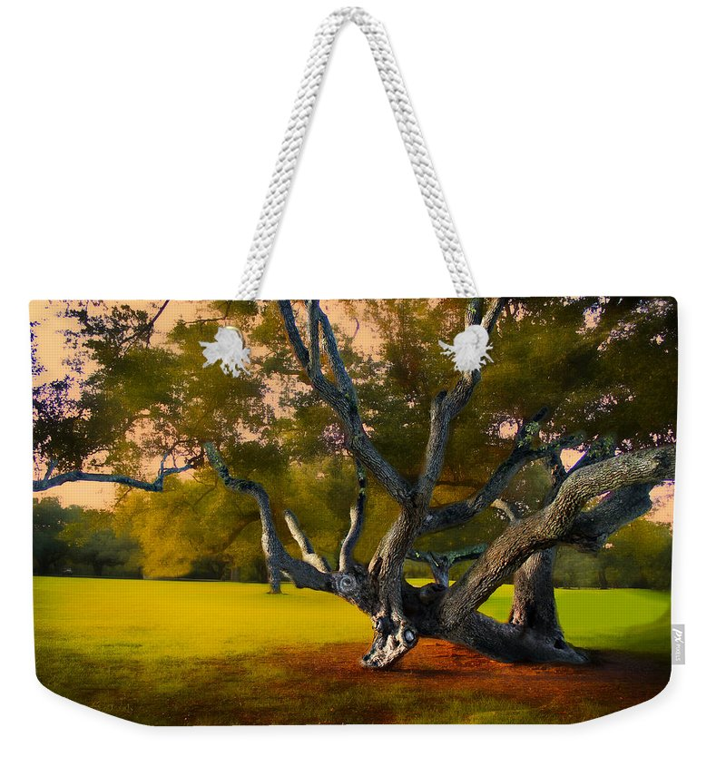 Trees Weekender Tote Bag featuring the photograph Tree Of Life by Carlos Diaz