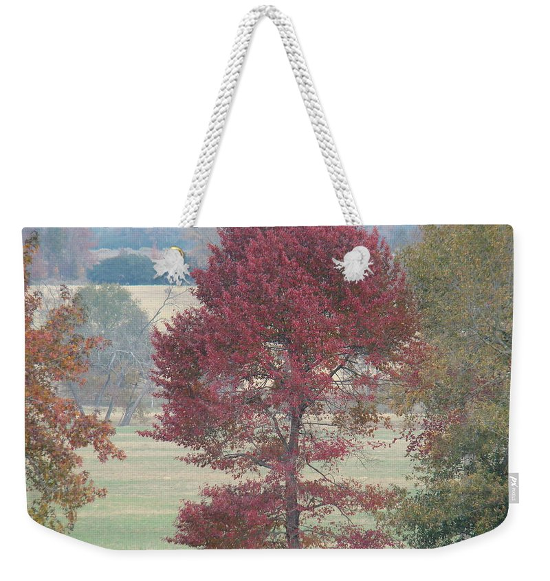 Fall Weekender Tote Bag featuring the photograph Tree Of Red by Michael MacGregor