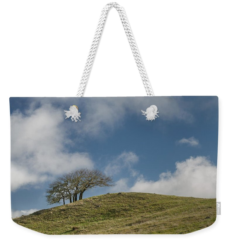 Green Weekender Tote Bag featuring the photograph Tree On A Hill by Greg Nyquist