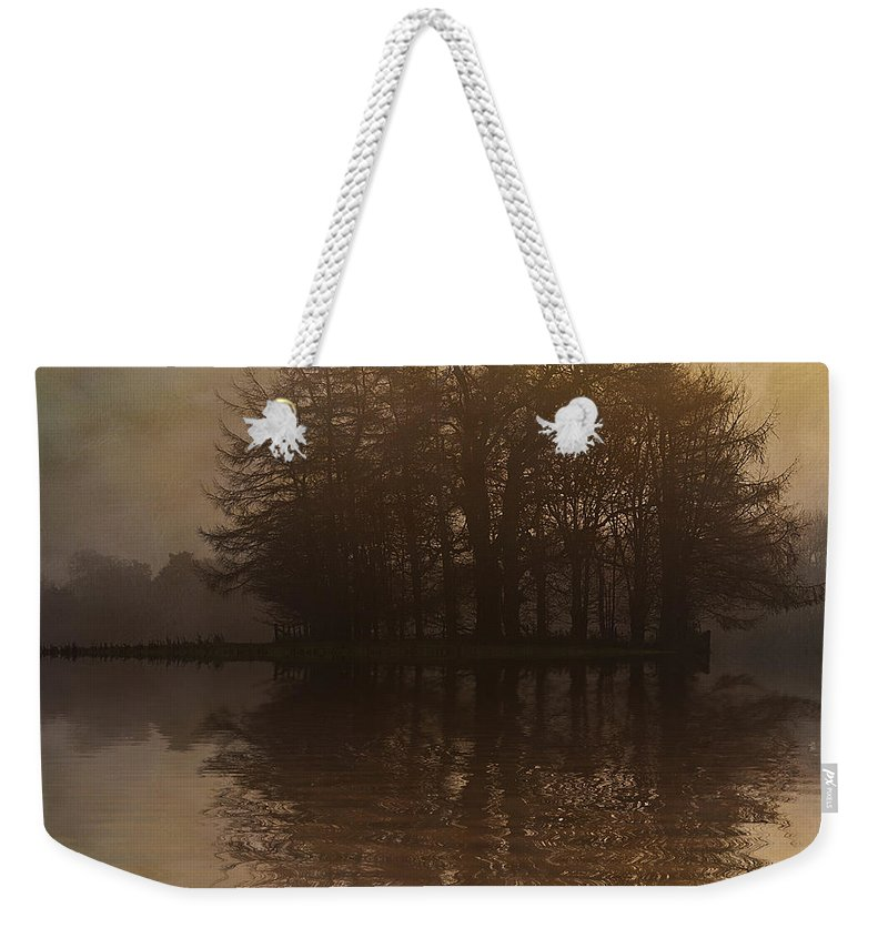 Tree Weekender Tote Bag featuring the photograph Tree Reflections II by David Pringle