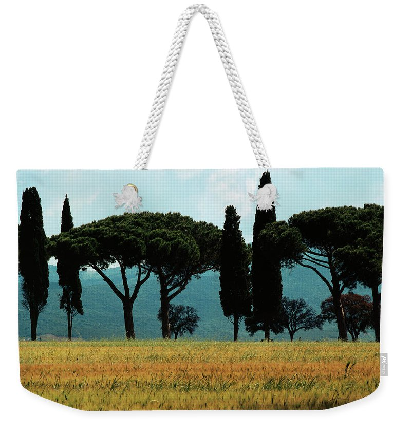 Heiko Weekender Tote Bag featuring the photograph Tree Row In Tuscany by Heiko Koehrer-Wagner