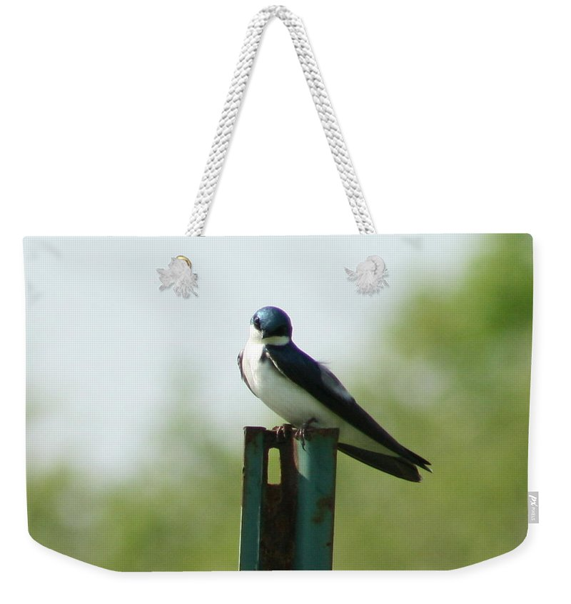 Tree Swallow Weekender Tote Bag featuring the photograph Tree Swallow Wink by Neal Eslinger