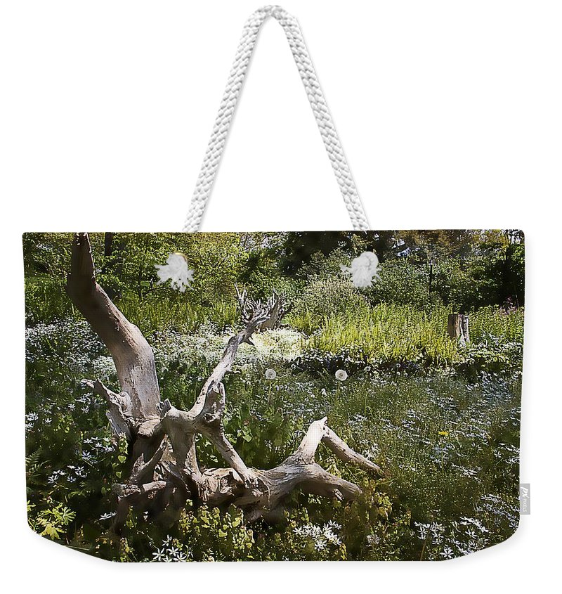 Tree Weekender Tote Bag featuring the photograph Tree Trunk In The Meadow by Alice Gipson