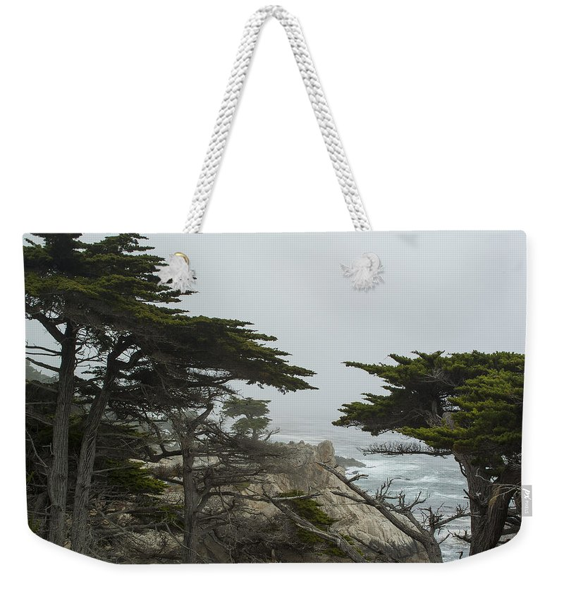 Monterey California Weekender Tote Bag featuring the photograph Trees And Mist by Robert Mollett