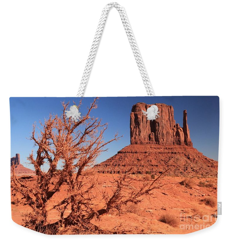 Monument Valley Weekender Tote Bag featuring the photograph Trees And Mittens by Adam Jewell