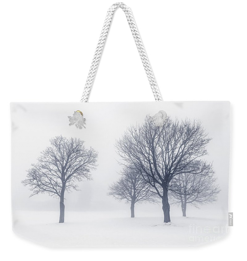 Trees Weekender Tote Bag featuring the photograph Trees In Winter Fog by Elena Elisseeva