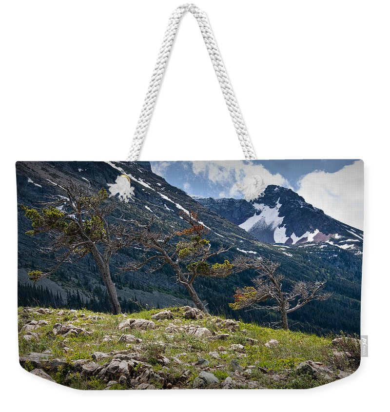 Art Weekender Tote Bag featuring the photograph Trees On Top Of A Ridge At Glacier National Park by Randall Nyhof