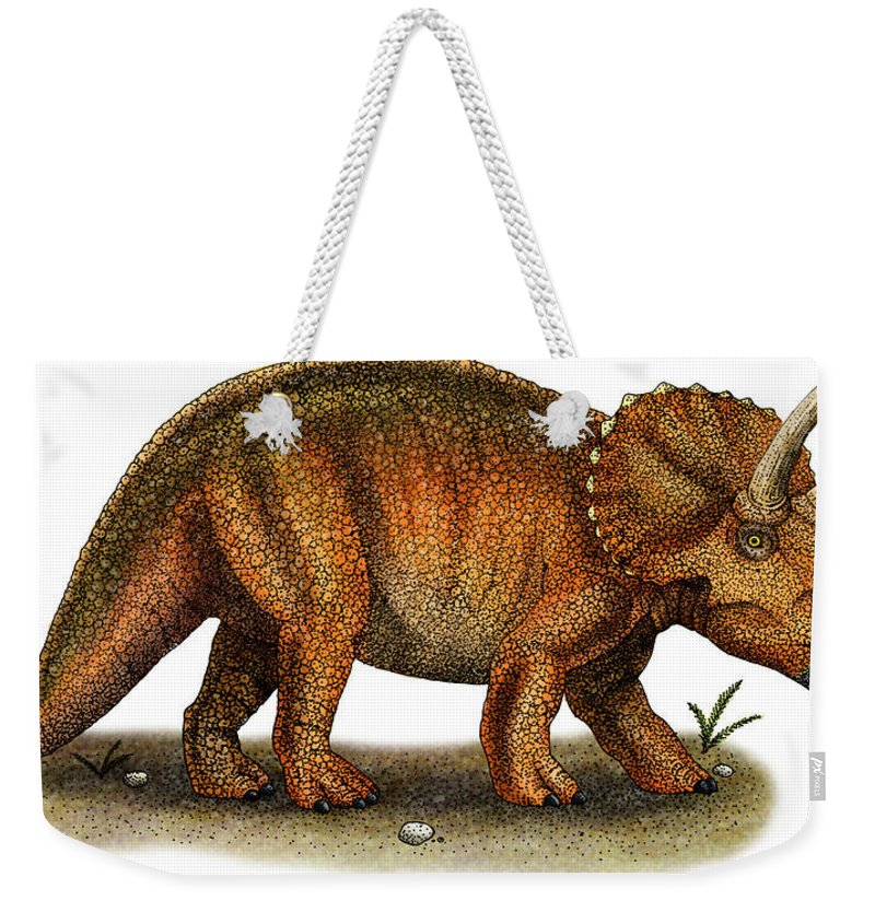 Reptile Weekender Tote Bag featuring the photograph Triceratops by Roger Hall