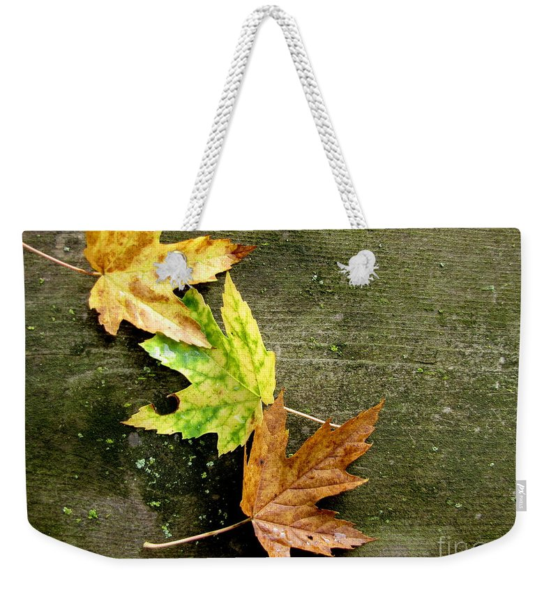 Autumn Leaves Weekender Tote Bag featuring the photograph Trio Of Leaves by Marilyn Smith