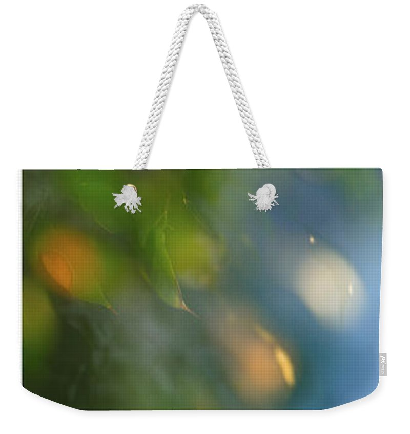 Triptico Hojas Weekender Tote Bag featuring the photograph Triptico Hojas Luminosas by Guido Montanes Castillo
