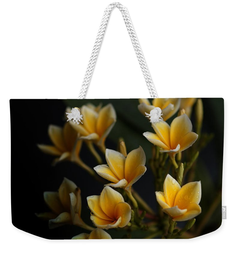 Flowers Weekender Tote Bag featuring the photograph Tropic Welcome by Miguel Winterpacht