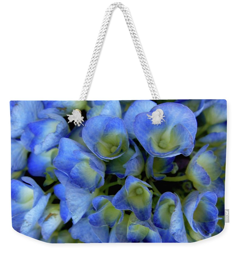 Blue Flowers Weekender Tote Bag featuring the photograph True Blue by Donna Blackhall