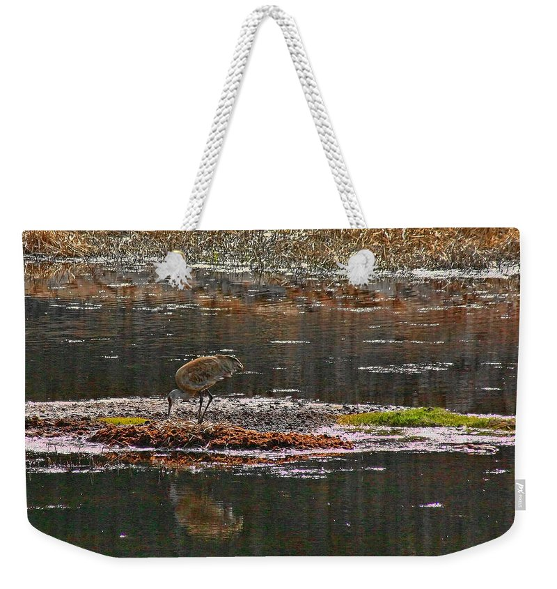 Kids Weekender Tote Bag featuring the photograph Tucking In The Kids by Gary Holmes