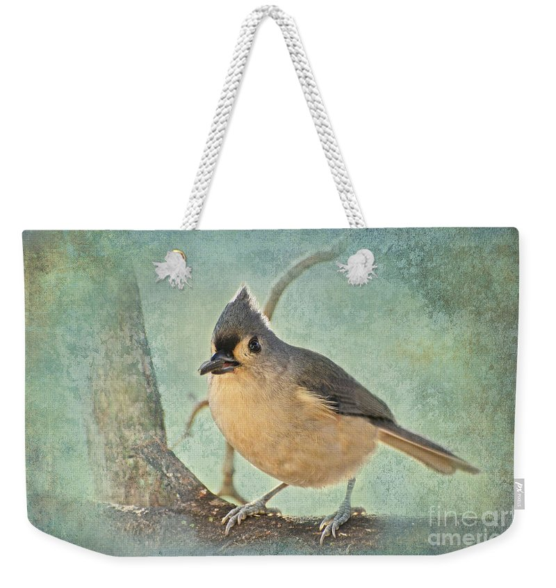 Animals Weekender Tote Bag featuring the photograph Tufted Titmouse IIi by Debbie Portwood