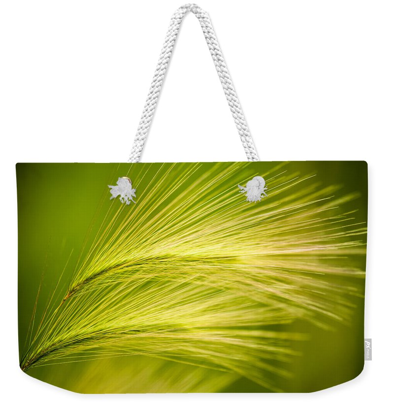 Ornamental Grass Weekender Tote Bag featuring the photograph Tufts Of Ornamental Grass by Onyonet Photo Studios
