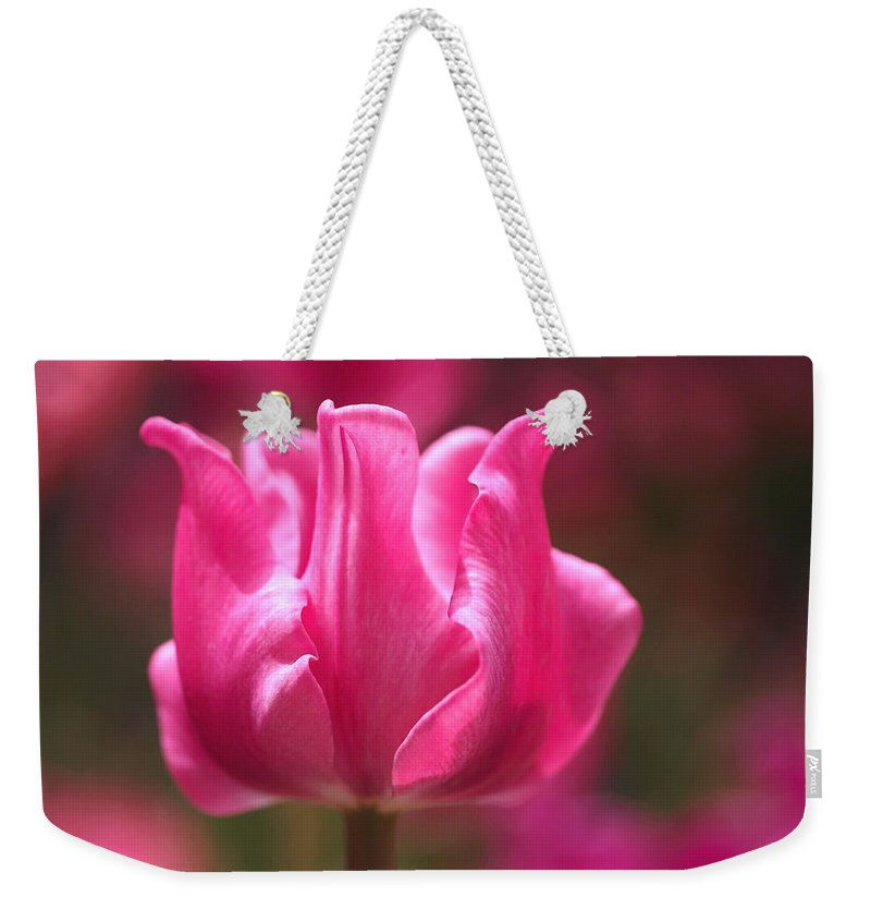 Tulip Weekender Tote Bag featuring the photograph Tulip At Attention by Rona Black