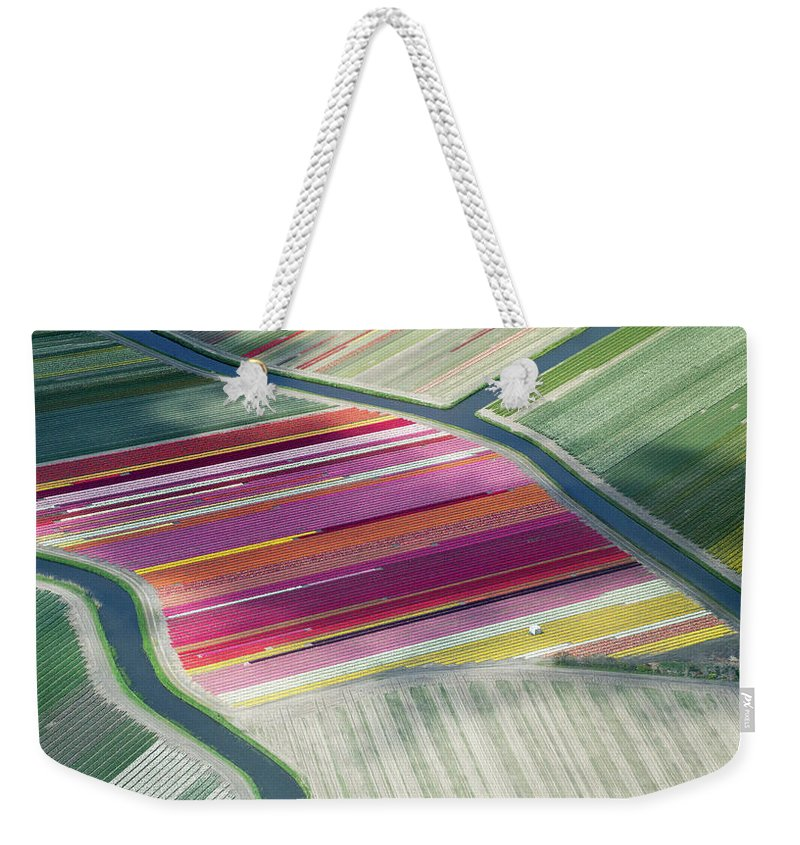 Curve Weekender Tote Bag featuring the photograph Tulip Fields, Aerial View, South by Frans Sellies