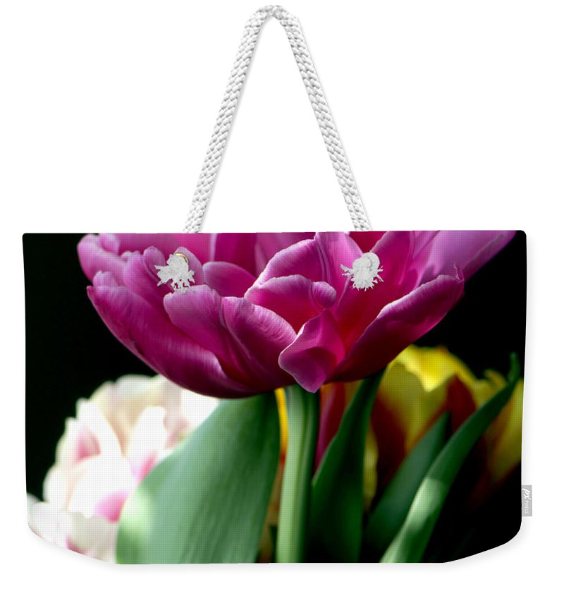 Tulip Weekender Tote Bag featuring the photograph Tulip For Easter by Sharon Talson