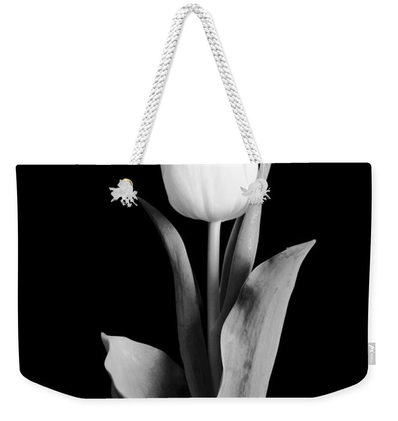 Tulip Weekender Tote Bag featuring the photograph Tulip by Sebastian Musial
