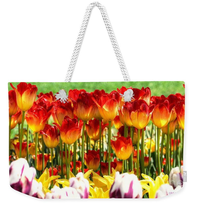 Tulip Weekender Tote Bag featuring the photograph Tulip Stand In Mount Vernon Washington by Tap On Photo