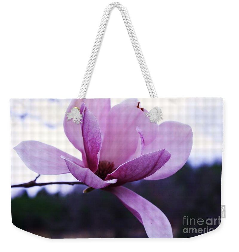 Tulip Tree Flower Weekender Tote Bag featuring the photograph Tulip Tree Blooming by Tia Patton